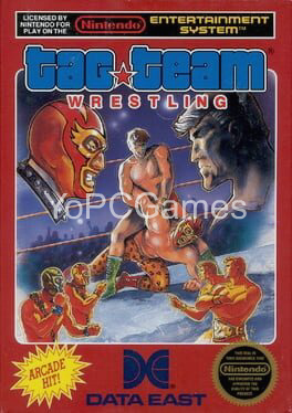tag team wrestling game